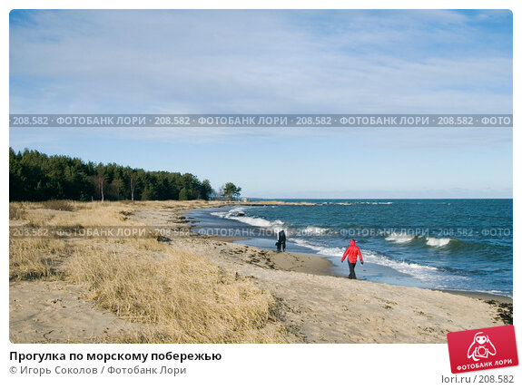Прогулка по морскому побережью, фото № 208582, снято 23 февраля 2008 г. (c) Игорь Соколов / Фотобанк Лори