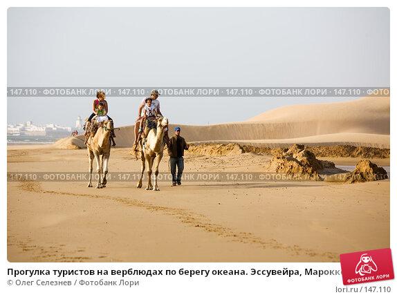 Купить «Прогулка туристов на верблюдах по берегу океана. Эссувейра, Марокко.», фото № 147110, снято 1 августа 2007 г. (c) Олег Селезнев / Фотобанк Лори