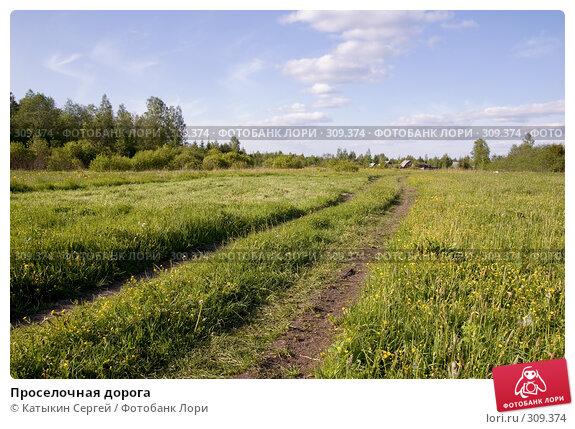 Купить «Проселочная дорога», фото № 309374, снято 31 мая 2008 г. (c) Катыкин Сергей / Фотобанк Лори