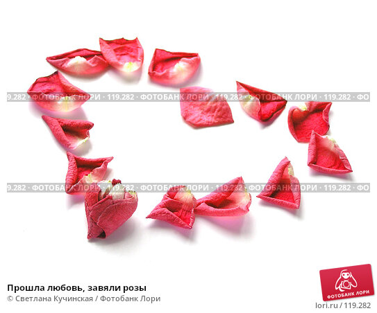Прошла любовь, завяли розы, фото № 119282, снято 25 января 2017 г. (c) Светлана Кучинская / Фотобанк Лори