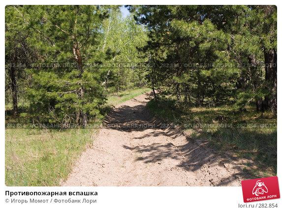 Противопожарная вспашка, фото № 282854, снято 2 мая 2008 г. (c) Игорь Момот / Фотобанк Лори