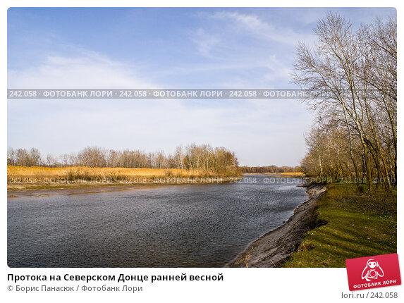Протока на Северском Донце ранней весной, фото № 242058, снято 29 марта 2008 г. (c) Борис Панасюк / Фотобанк Лори