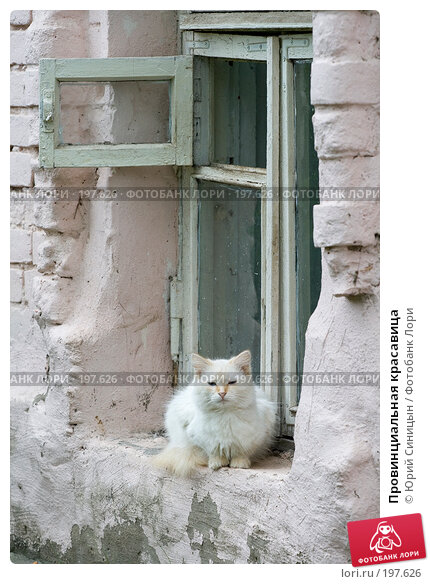 Провинциальная красавица, фото № 197626, снято 26 августа 2007 г. (c) Юрий Синицын / Фотобанк Лори