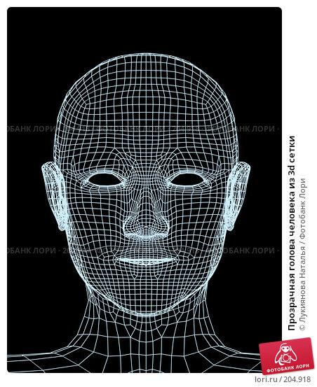 Прозрачная голова человека из 3d сетки, иллюстрация № 204918 (c) Лукиянова Наталья / Фотобанк Лори