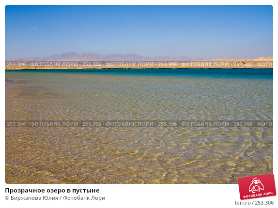 Прозрачное озеро в пустыне, фото № 253306, снято 2 января 2008 г. (c) Биржанова Юлия / Фотобанк Лори