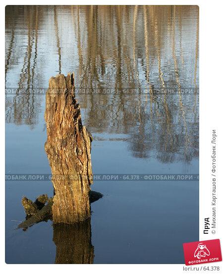 Пруд, эксклюзивное фото № 64378, снято 15 апреля 2007 г. (c) Михаил Карташов / Фотобанк Лори