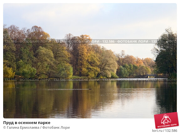 Пруд в осеннем парке, фото № 132586, снято 23 октября 2006 г. (c) Галина Ермолаева / Фотобанк Лори