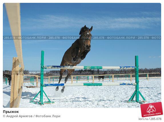 Купить «Прыжок», фото № 285078, снято 24 марта 2006 г. (c) Андрей Армягов / Фотобанк Лори