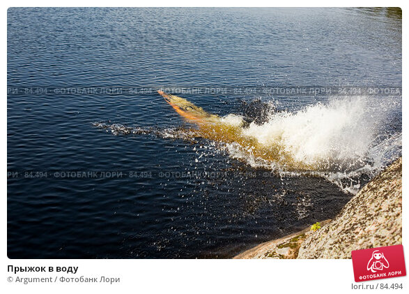 Прыжок в воду, фото № 84494, снято 12 августа 2007 г. (c) Argument / Фотобанк Лори