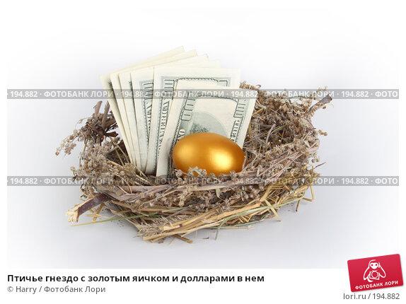 Птичье гнездо с золотым яичком и долларами в нем, фото № 194882, снято 3 октября 2007 г. (c) Harry / Фотобанк Лори