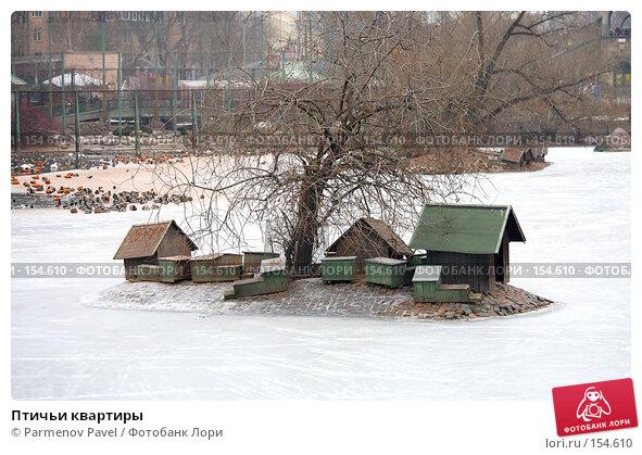 Птичьи квартиры, фото № 154610, снято 11 декабря 2007 г. (c) Parmenov Pavel / Фотобанк Лори