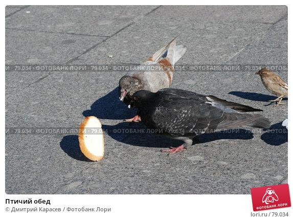 Птичий обед, фото № 79034, снято 2 сентября 2007 г. (c) Дмитрий Карасев / Фотобанк Лори