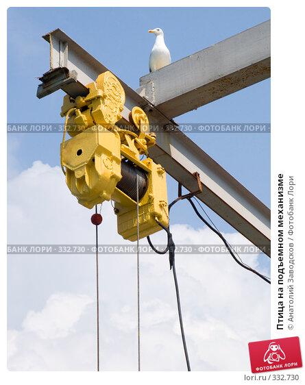 Птица на подъемном механизме, фото № 332730, снято 29 мая 2007 г. (c) Анатолий Заводсков / Фотобанк Лори