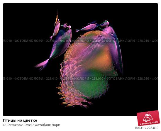 Птицы на цветке, иллюстрация № 228010 (c) Parmenov Pavel / Фотобанк Лори