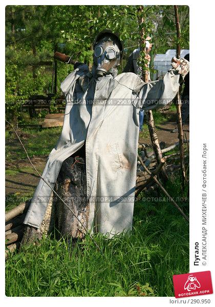 Купить «Пугало», фото № 290950, снято 18 мая 2008 г. (c) АЛЕКСАНДР МИХЕИЧЕВ / Фотобанк Лори