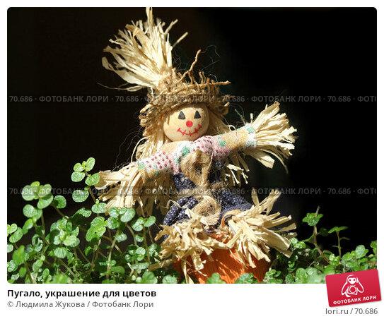 Пугало, украшение для цветов, фото № 70686, снято 8 мая 2007 г. (c) Людмила Жукова / Фотобанк Лори