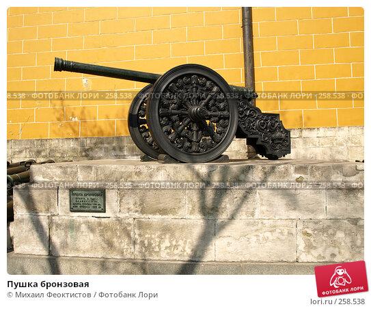 Купить «Пушка бронзовая», фото № 258538, снято 6 апреля 2008 г. (c) Михаил Феоктистов / Фотобанк Лори