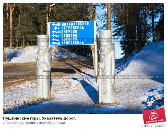 Пушкинские горы. Указатель дорог., эксклюзивное фото № 178682, снято 5 января 2008 г. (c) Александр Щепин / Фотобанк Лори