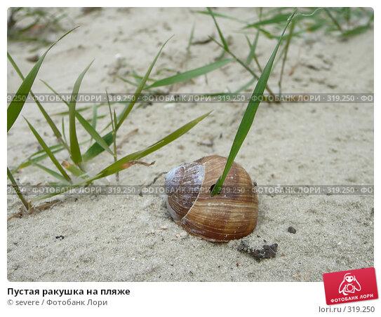 Пустая ракушка на пляже, фото № 319250, снято 30 марта 2017 г. (c) severe / Фотобанк Лори