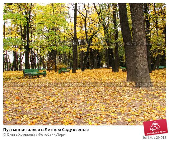 Пустынная аллея в Летнем Саду осенью, фото № 29018, снято 15 октября 2006 г. (c) Ольга Хорькова / Фотобанк Лори