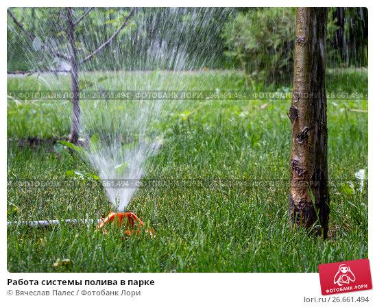 Работа системы полива в парке, фото № 26661494, снято 26 мая 2017 г. (c) Вячеслав Палес / Фотобанк Лори