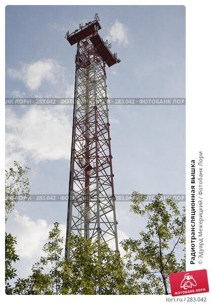 Радиотрансляционная вышка, фото № 283042, снято 12 мая 2008 г. (c) Эдуард Межерицкий / Фотобанк Лори