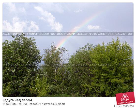 Радуга над лесом, фото № 323230, снято 15 июня 2008 г. (c) Коннов Леонид Петрович / Фотобанк Лори