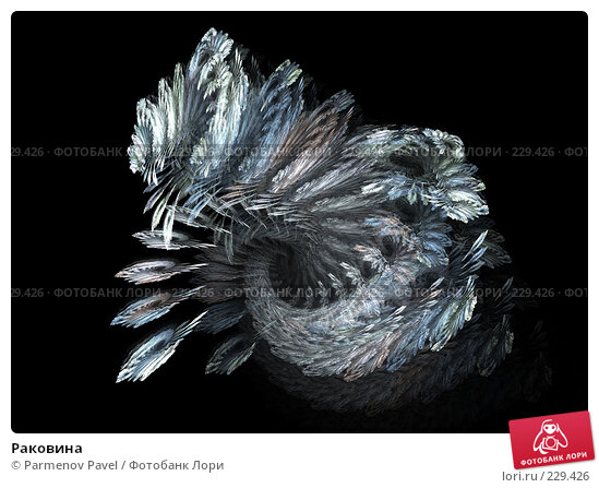 Раковина, иллюстрация № 229426 (c) Parmenov Pavel / Фотобанк Лори