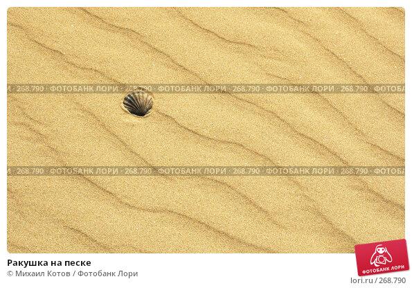 Ракушка на песке, фото № 268790, снято 10 апреля 2007 г. (c) Михаил Котов / Фотобанк Лори