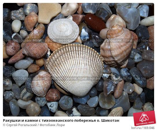 Ракушки и камни с тихоокеанского побережья о. Шикотан, фото № 169046, снято 25 июля 2017 г. (c) Сергей Рогальский / Фотобанк Лори