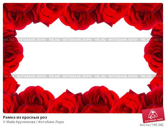Рамка из красных роз, фото № 195342, снято 5 января 2008 г. (c) Майя Крученкова / Фотобанк Лори