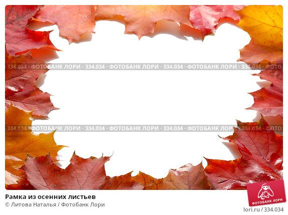 Купить «Рамка из осенних листьев», фото № 334034, снято 22 сентября 2007 г. (c) Литова Наталья / Фотобанк Лори