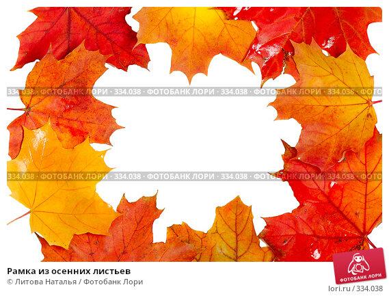 Рамка из осенних листьев, фото № 334038, снято 22 сентября 2007 г. (c) Литова Наталья / Фотобанк Лори