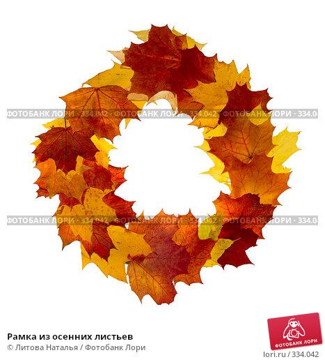 Купить «Рамка из осенних листьев», фото № 334042, снято 27 сентября 2007 г. (c) Литова Наталья / Фотобанк Лори