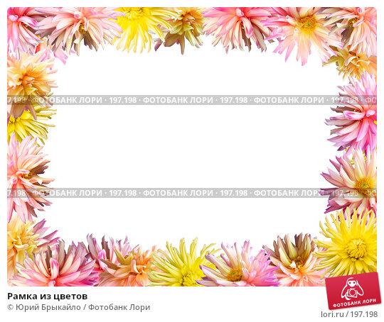 Рамка из цветов, иллюстрация № 197198 (c) Юрий Брыкайло / Фотобанк Лори