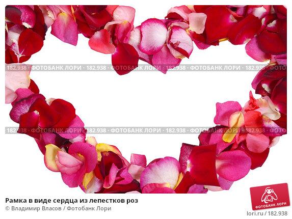 Купить «Рамка в виде сердца из лепестков роз», фото № 182938, снято 19 января 2008 г. (c) Владимир Власов / Фотобанк Лори