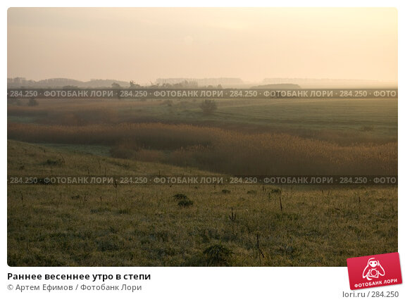 Раннее весеннее утро в степи, фото № 284250, снято 3 мая 2008 г. (c) Артем Ефимов / Фотобанк Лори