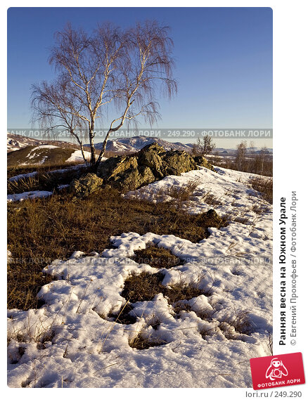 Ранняя весна на Южном Урале, фото № 249290, снято 1 апреля 2007 г. (c) Евгений Прокофьев / Фотобанк Лори
