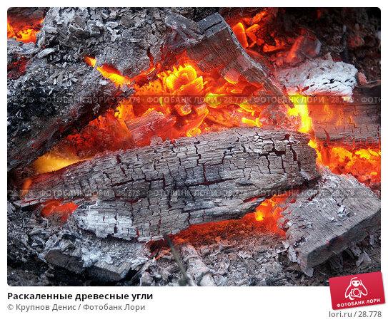 Купить «Раскаленные древесные угли», фото № 28778, снято 23 августа 2003 г. (c) Крупнов Денис / Фотобанк Лори