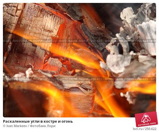 Раскаленные угли в костре и огонь, фото № 250622, снято 23 октября 2016 г. (c) Василий Каргандюм / Фотобанк Лори