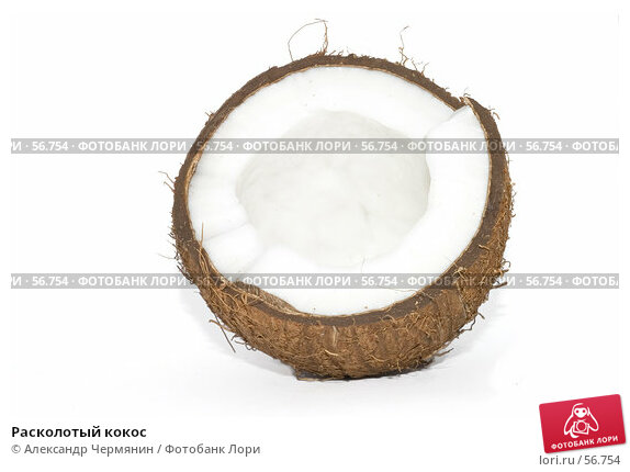 Расколотый кокос, фото № 56754, снято 11 ноября 2006 г. (c) Александр Чермянин / Фотобанк Лори