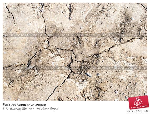 Растрескавшаяся земля, эксклюзивное фото № 270358, снято 1 мая 2008 г. (c) Александр Щепин / Фотобанк Лори