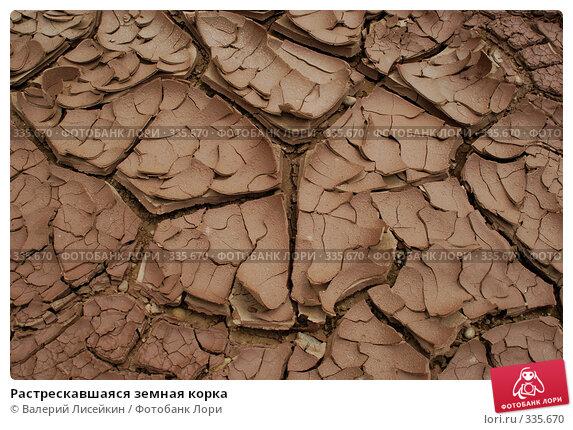 Растрескавшаяся земная корка, фото № 335670, снято 24 июня 2008 г. (c) Валерий Лисейкин / Фотобанк Лори