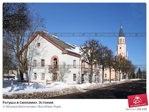 Ратуша в Силламяэ. Эстония, фото № 266630, снято 29 марта 2008 г. (c) Наталья Белотелова / Фотобанк Лори