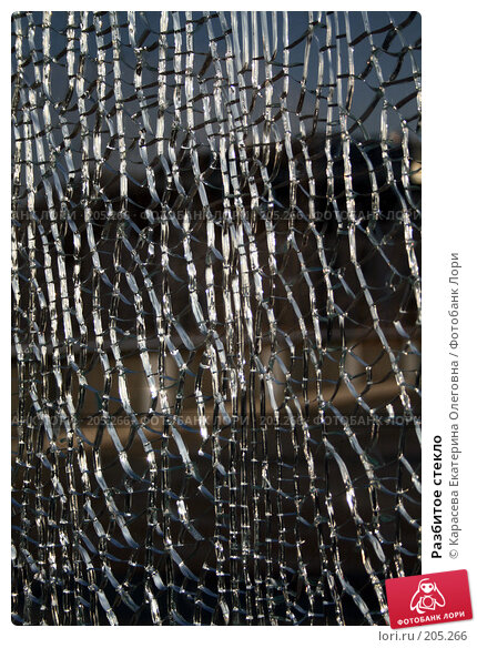 Купить «Разбитое стекло», фото № 205266, снято 18 января 2008 г. (c) Карасева Екатерина Олеговна / Фотобанк Лори