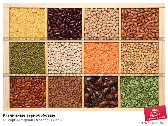 Купить «Различные зернобобовые», фото № 21760962, снято 16 апреля 2014 г. (c) Георгий Марков / Фотобанк Лори
