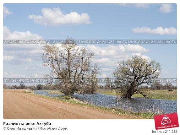 Разлив на реке Ахтуба, фото № 211282, снято 22 апреля 2007 г. (c) Олег Ивашкевич / Фотобанк Лори