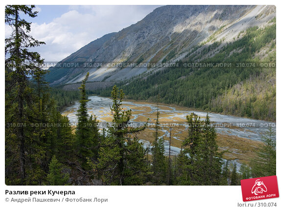 Разлив реки Кучерла, фото № 310074, снято 24 октября 2016 г. (c) Андрей Пашкевич / Фотобанк Лори