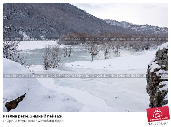 Разлив реки. Зимний пейзаж., фото № 206430, снято 2 января 2008 г. (c) Ирина Игумнова / Фотобанк Лори