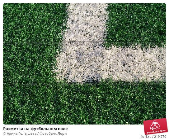 Разметка на футбольном поле, эксклюзивное фото № 219770, снято 26 февраля 2008 г. (c) Алина Голышева / Фотобанк Лори